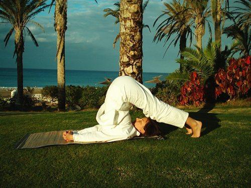 Yoga, Abnehmen, Pflug, Halasana, Fettverbrennung, Idealgewicht, Kalorien verbrennen